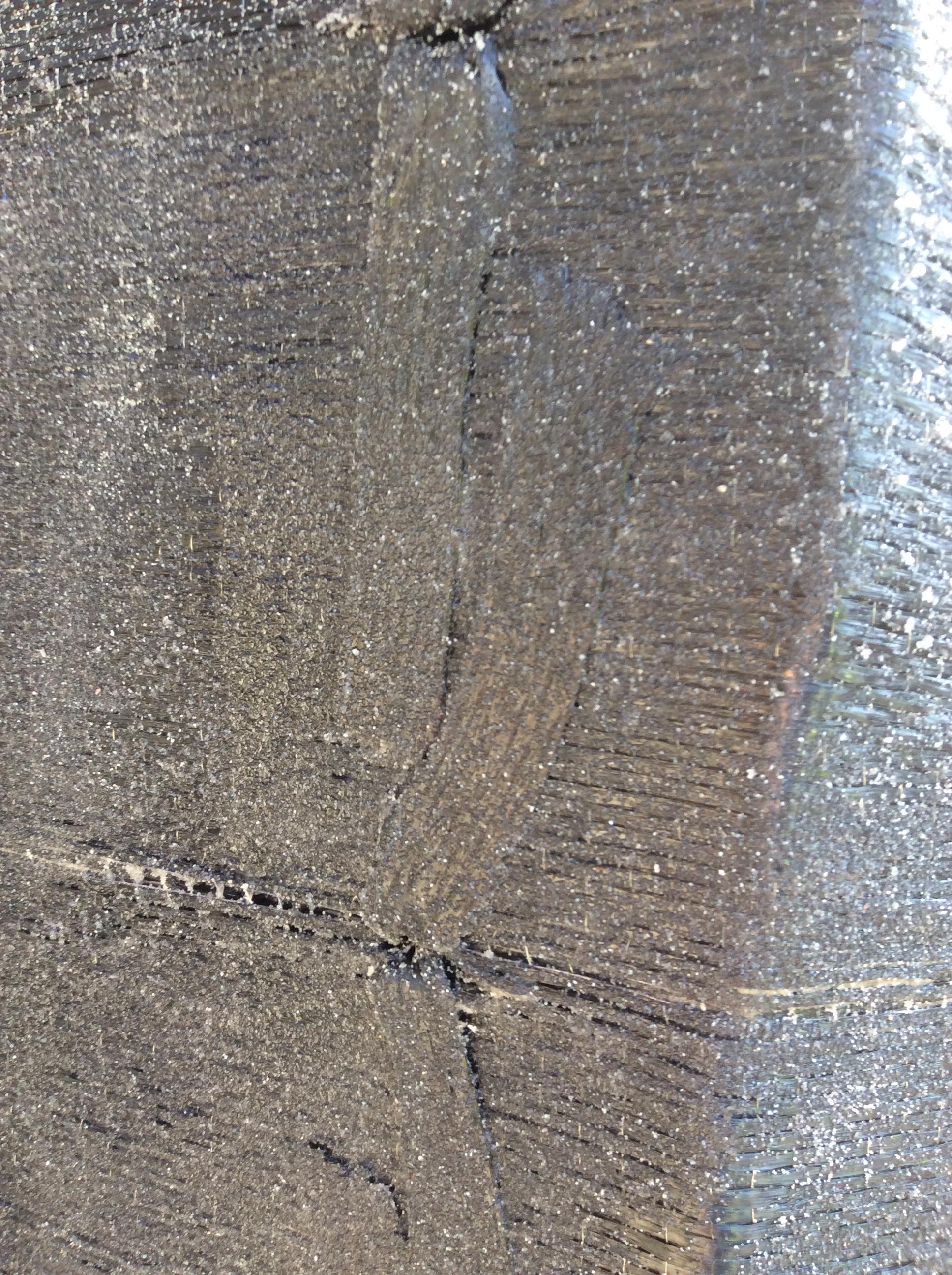 Viadotto Jannello, fibra di carbonio